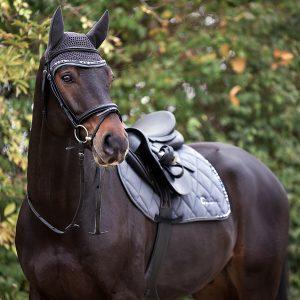 Für's Pferd